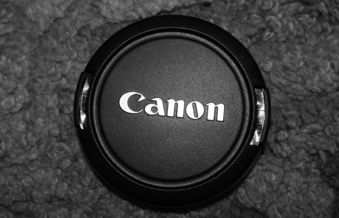 Unannounced Canon EOS-b DSLR Leaked On Best Buy