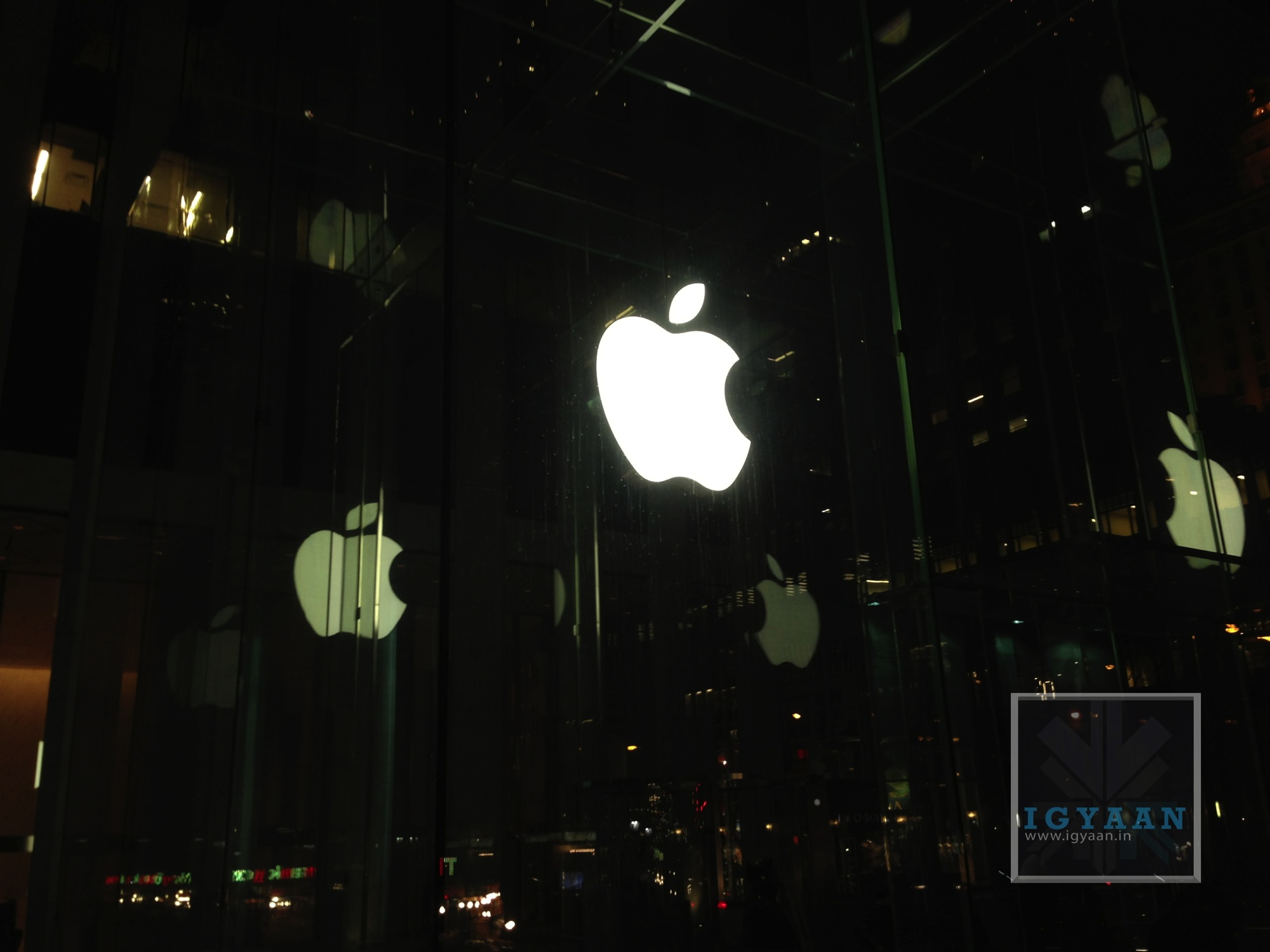 Apple LOGO Store 1