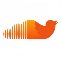 twitter-is-reportedly-in-talks-to-buy-soundcloud-0-300x300