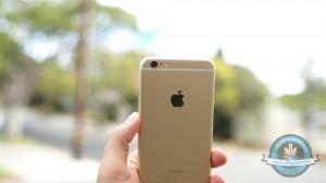 iPhone 6 Plus 13