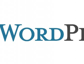 WordPress Faces a Temporary Ban in Pakistan Because of Security Reasons